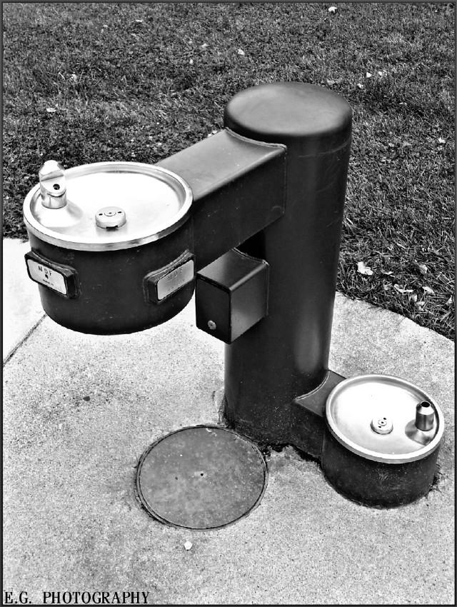 #monochrome #drinkingfountain #photography  Dog Friendly Fountain 🐕