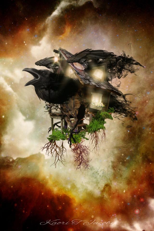 cRow-V  #crow #adventure #digitaldesign #customclipart