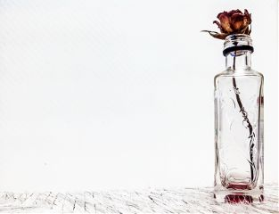 simple minimal red flower