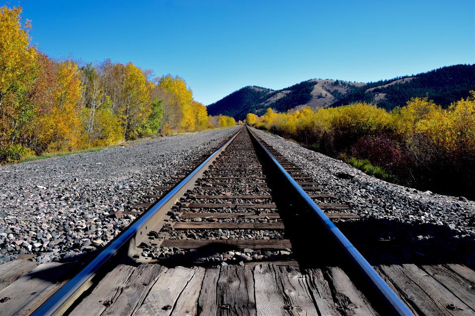 Rollin #landscape#autumn#fall#freetoedit Perspective#train