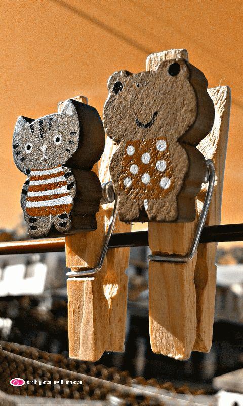 orange photography cute colorswap keepitsmile