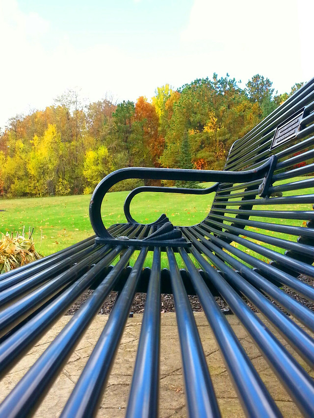 #photography   #colorful  #nature #bench #Autum