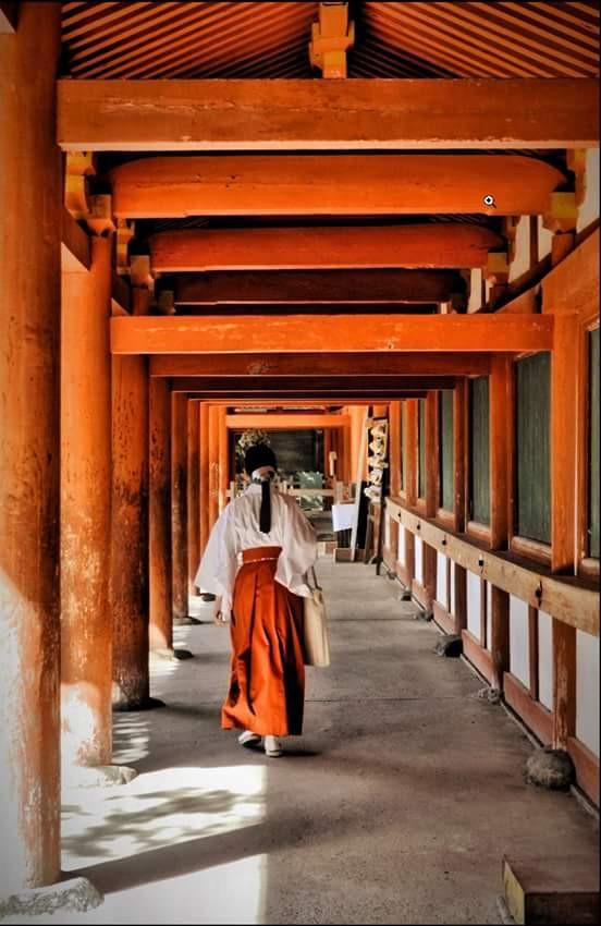 #photography   #Japan