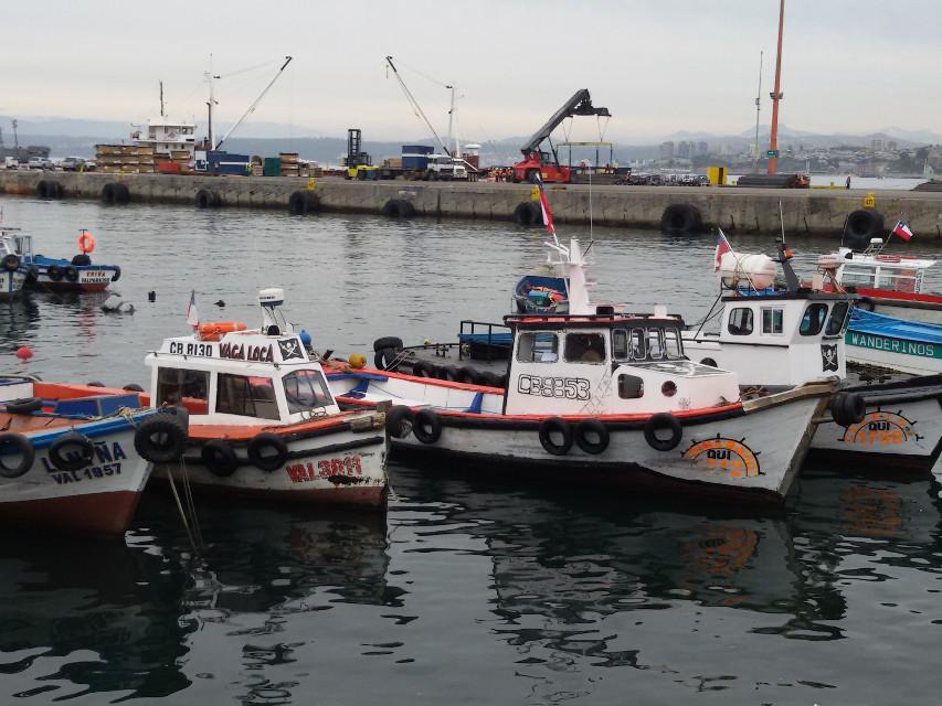 #puerto #bote