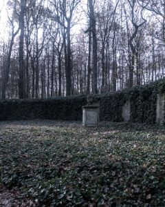 friedhof cemetry photography emotions winter