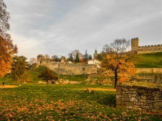 belgrade autumn park