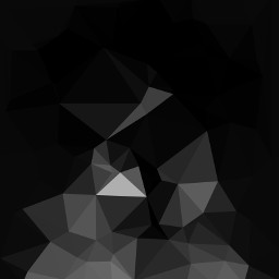 blackandwhite freetoedit hdr polygon art