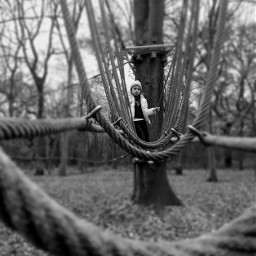 forest fun climbing black