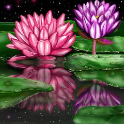digitaldrawing digitalart flowers nature landscape