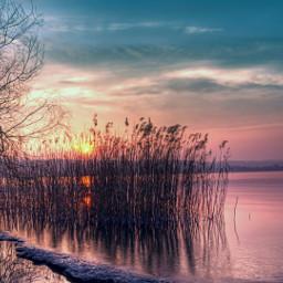 nature freetoedit photography