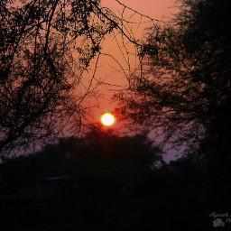 freetoedit sunset temperatureadjust nature winter