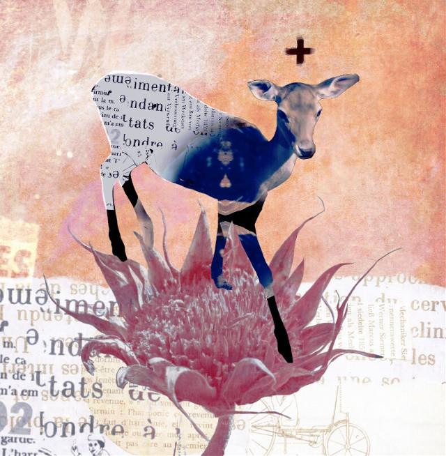 #collage #digitalcollage #deer