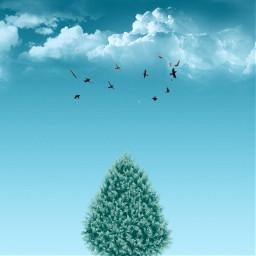 christmas tree surreal minimalist minimal