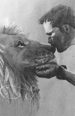 sketch kevinrichardson lion pencil art