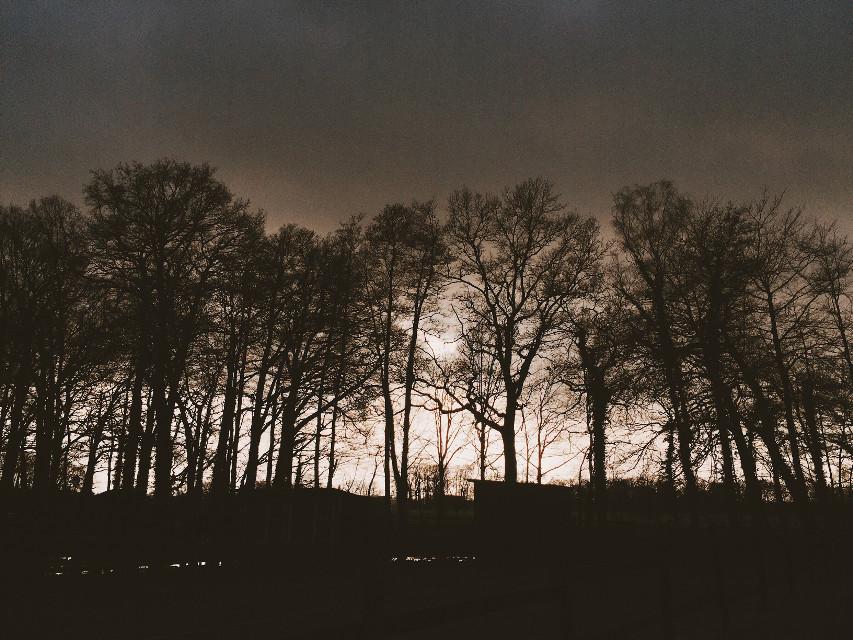 [̲̅a̲̅][̲̅f̲̅][̲̅t̲̅][̲̅e̲̅][̲̅r̲̅][̲̅n̲̅][̲̅o̲̅][̲̅o̲̅][̲̅n̲̅]🐒 #sky  #night #nightwalk #gassi #walk #spaziergang #nature #clouds #horizone #dark #luxxxs