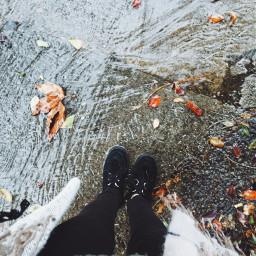 rain leaves creepers