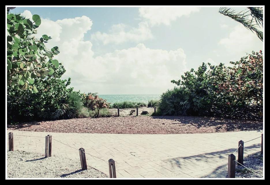My paradise #serenity #Miami #sea #scenery #colorful #vintage #mood  #pastel