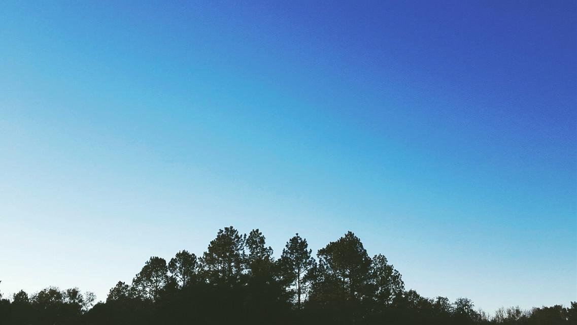#sunrise  #morning  #blueskies #nature #photography