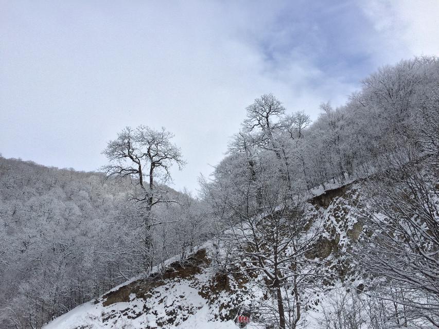 #freetoedit #armenia #nature