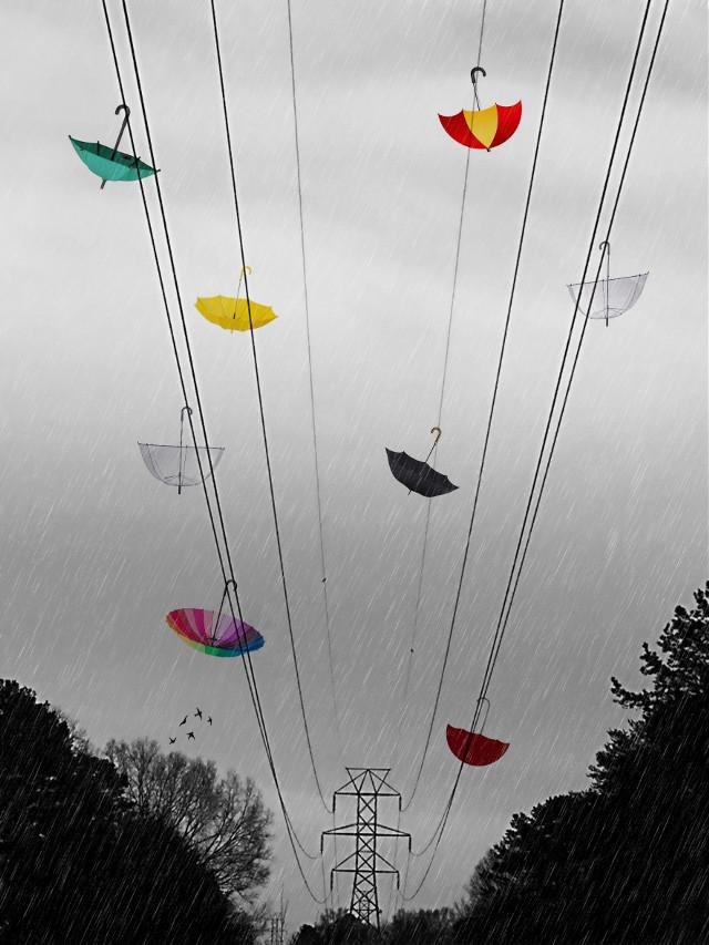 Umbrella Madness: Picsart FEATURED IMAGE 2/10/16 #explore #umbrella #texture6 #texturemask6  #interesting #art #nature #naturelover #naturelovers #photo #photography #creative #recent #naturephotography #scene #scenes #scenery  #season #seasons #view #views #featured #featuredphoto #featuredphotos #featuredimage #featuredimages