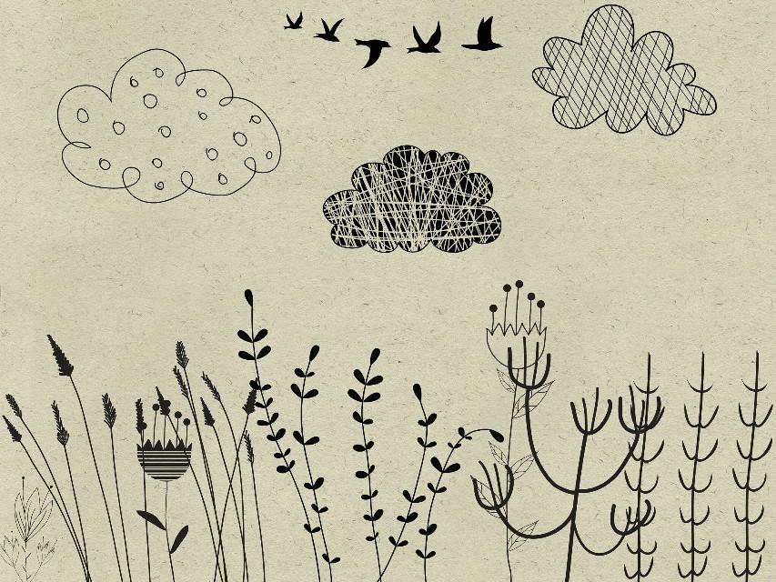 #meadowdreams   #madewithpicsart  #clipart