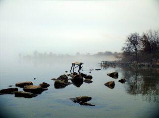 freetoedit nature fog