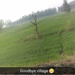 village train travel india memories