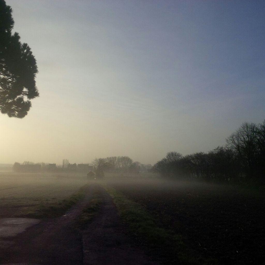 #sunrise  #nofilter
