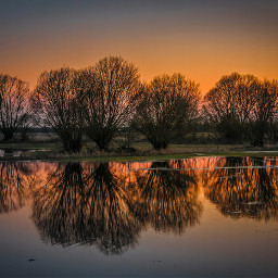 photography nature narew west wiosna