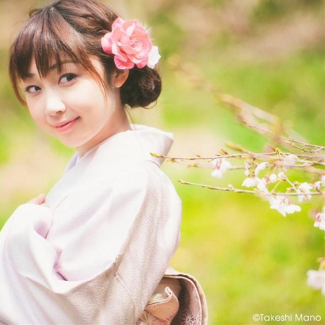 #sakura #kimono #japan #portrait #woman #girl #model #spring