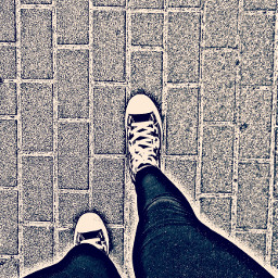 photography summer