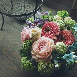 cute nature flower