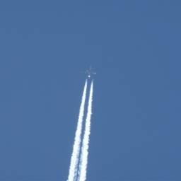 airplane noedit