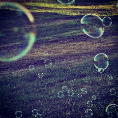bubbles cool colorful cute nature