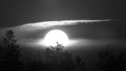 blackandwhite photography sun