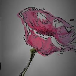 FreeToEdit flower love amazing beautiful