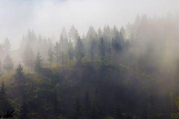 fog landscape morning sunrise freetoedit