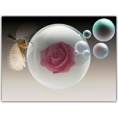 digitalart illustration balloon birds bubble