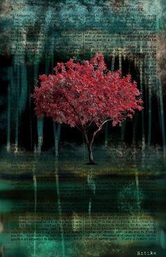 art drawing illustration fantasy tree