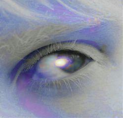 freetoedit eyecapture colorsplash colorful photography