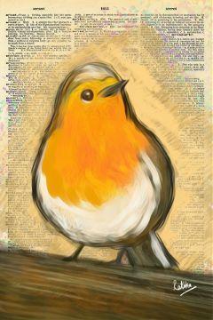 art drawing illustration fantasy bird