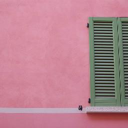 FreeToEdit wall window mirror pink trendy