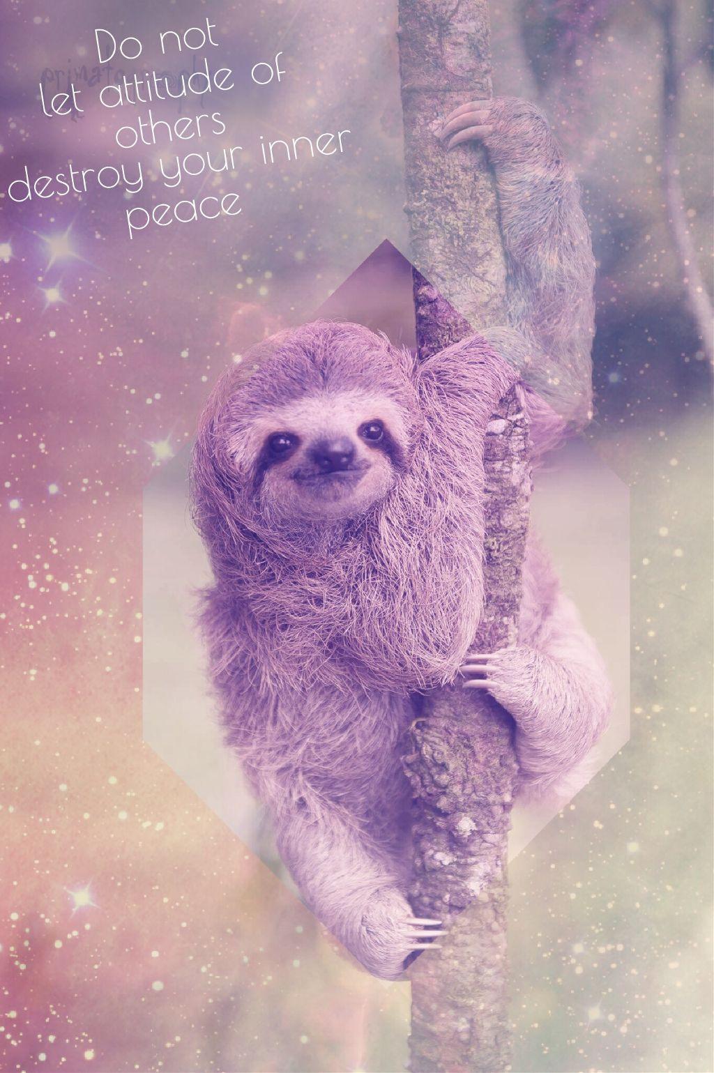Wallpaper Wallpapers Colorful Sloth Sloths Slothwallpap