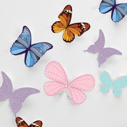 freetoedit edit butterfly butterflys color