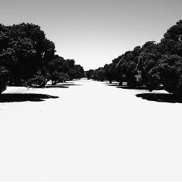 wppwhite freetoedit minimal minimalism travel