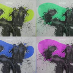 cesar mivision excuseme paint beatriz